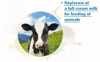 Replacers of a full-cream milk for feeding of animals